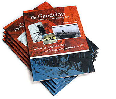 Gandelow Book by Jim McInerney Ilen School, Limerick